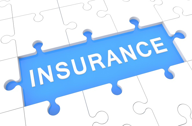FIRM WINS SUMMARY JUDGMENT FOR INSURANCE CARRIER CLIENT! - T