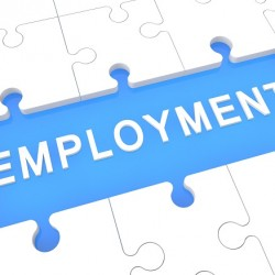 Employment - puzzle 3d render illustration with word on blue background